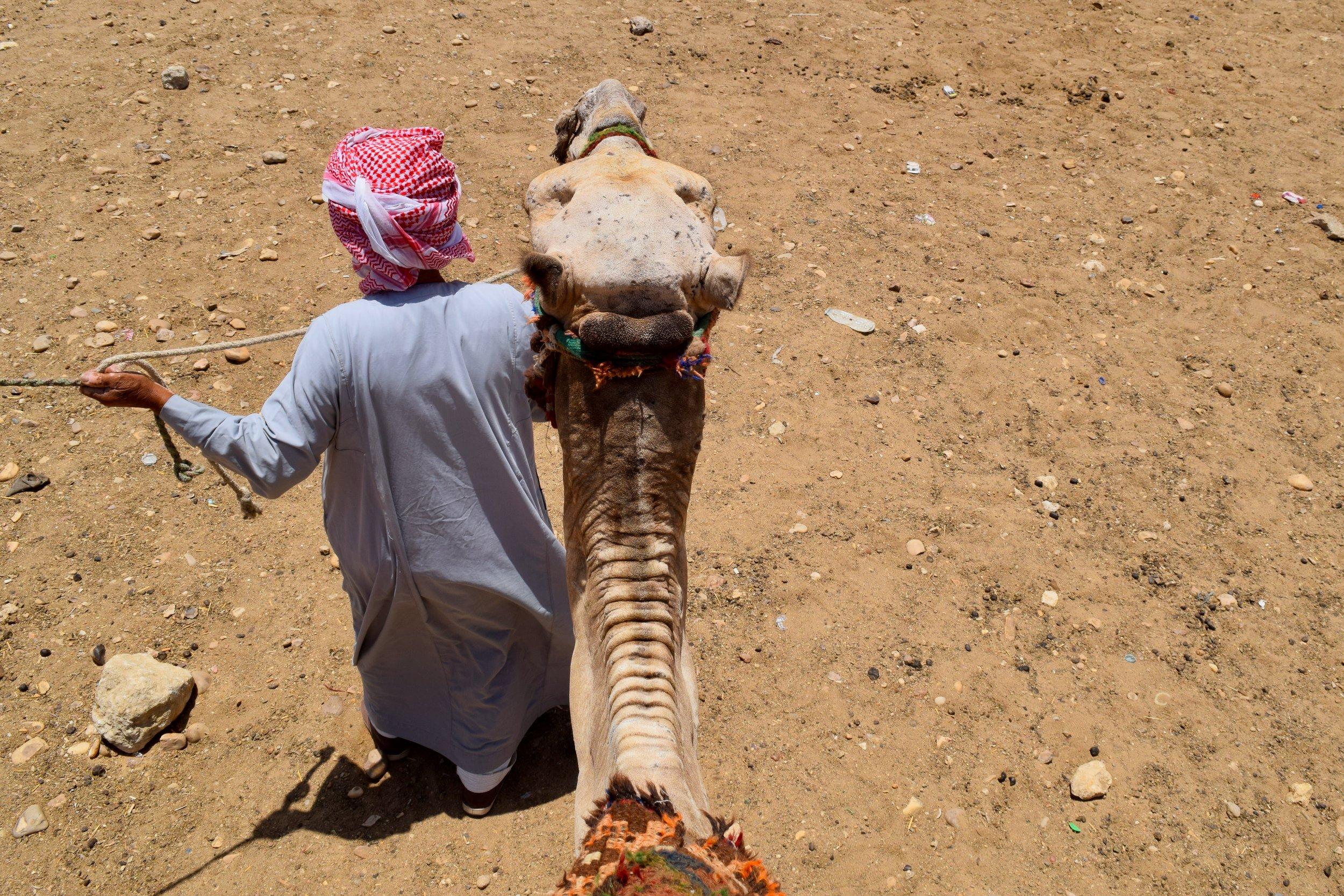 Riding my camel