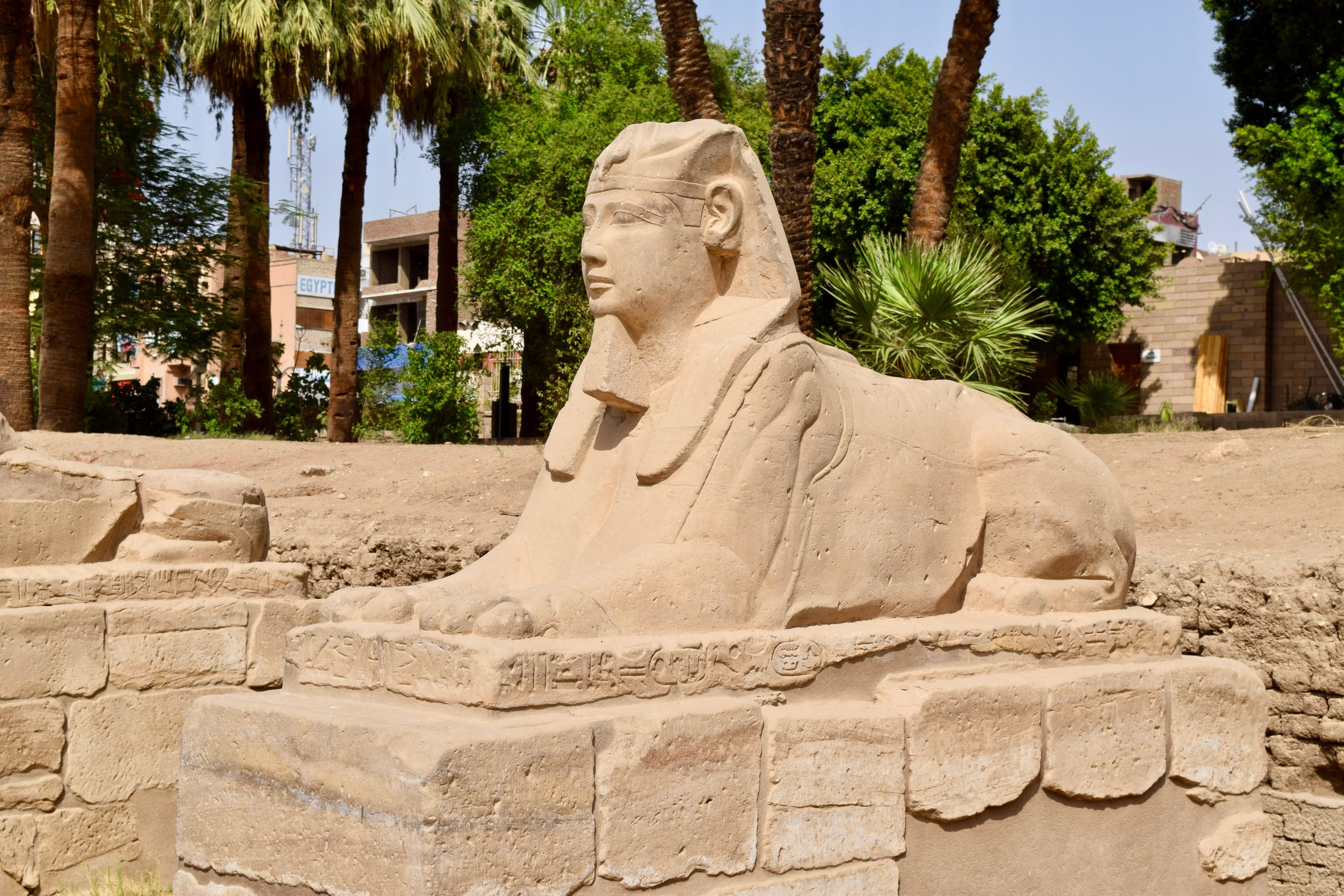 Sphinx of the king's head and lion's body