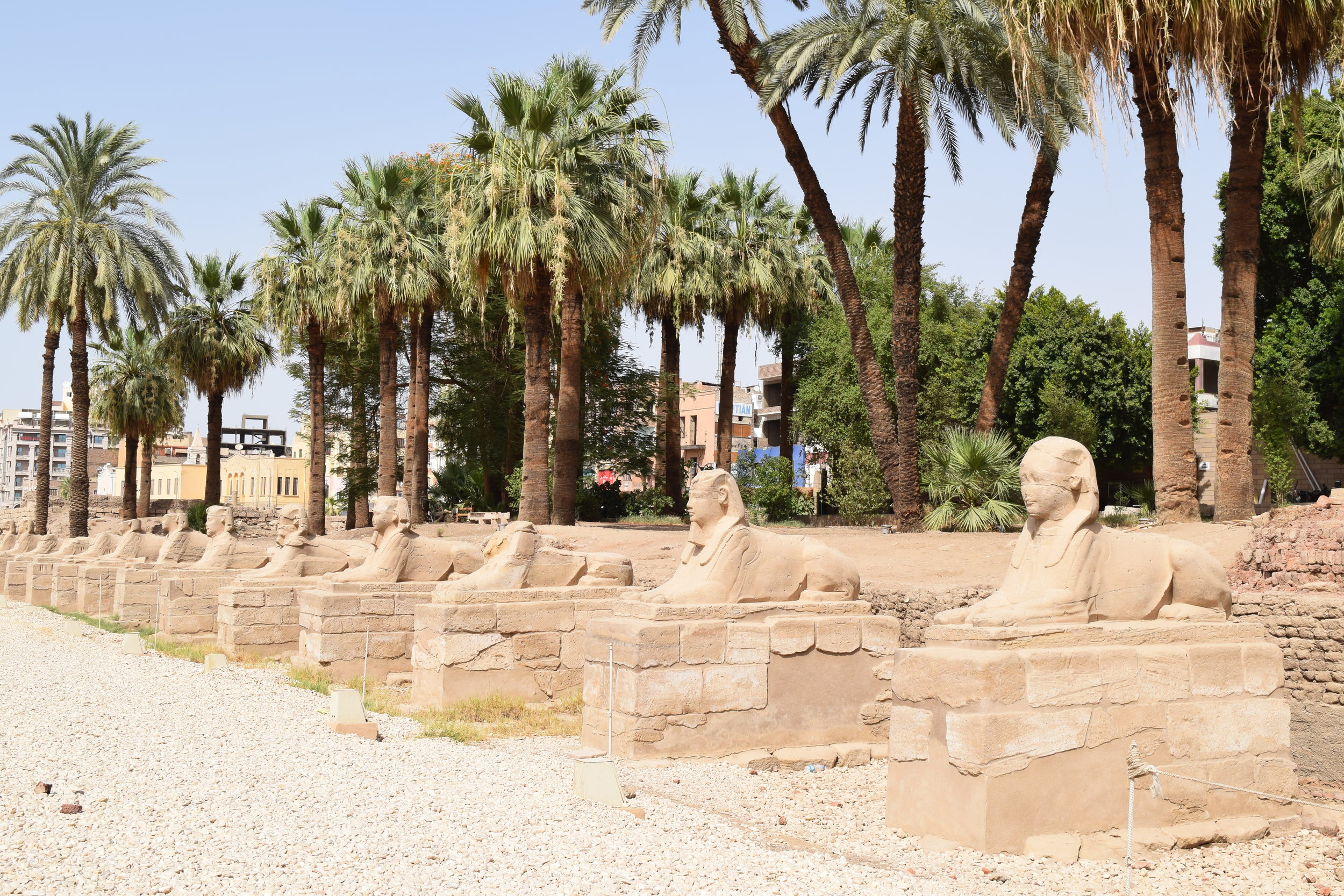 Closer view of the sphinxes