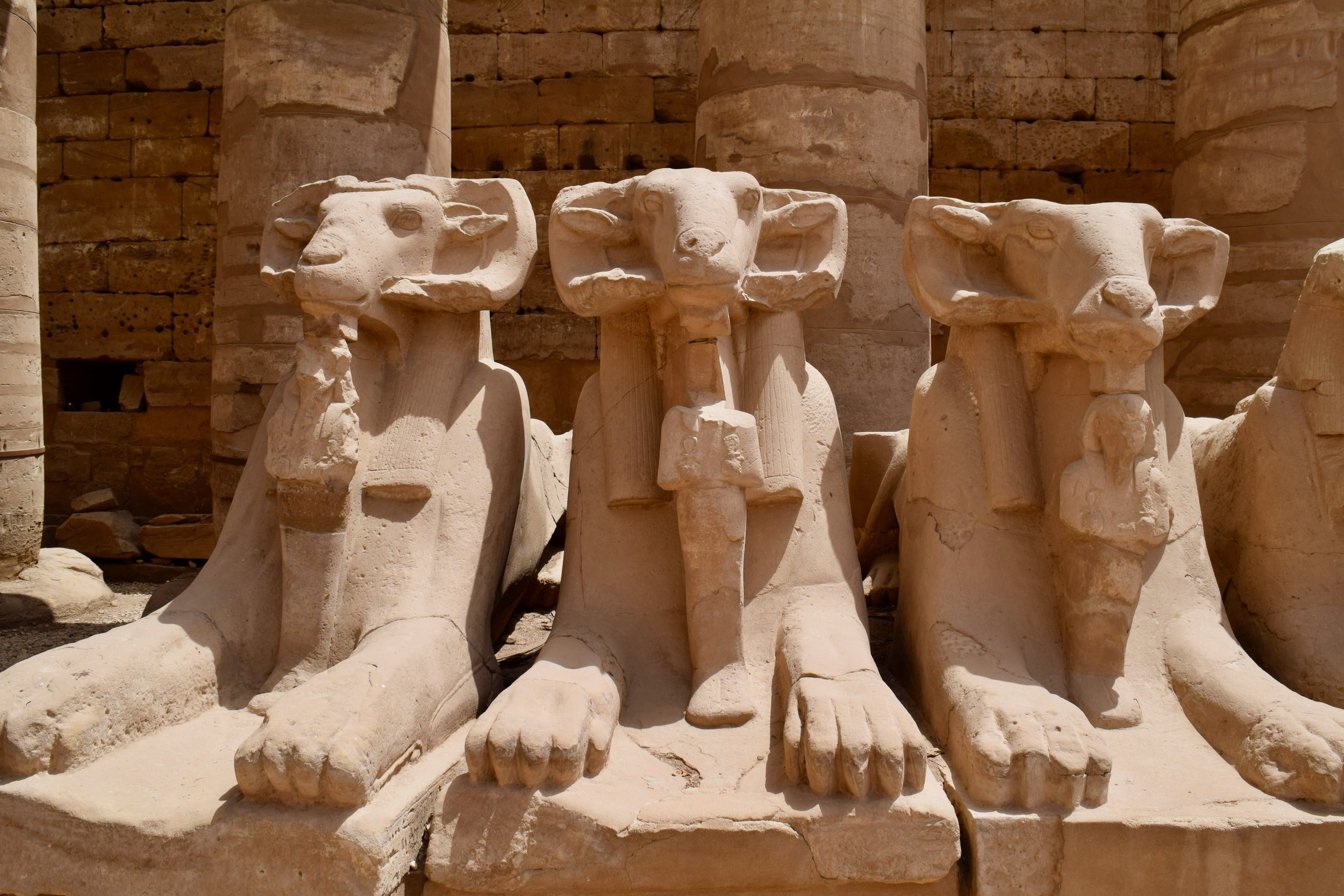 Collection of sphinxes in the first courtyard