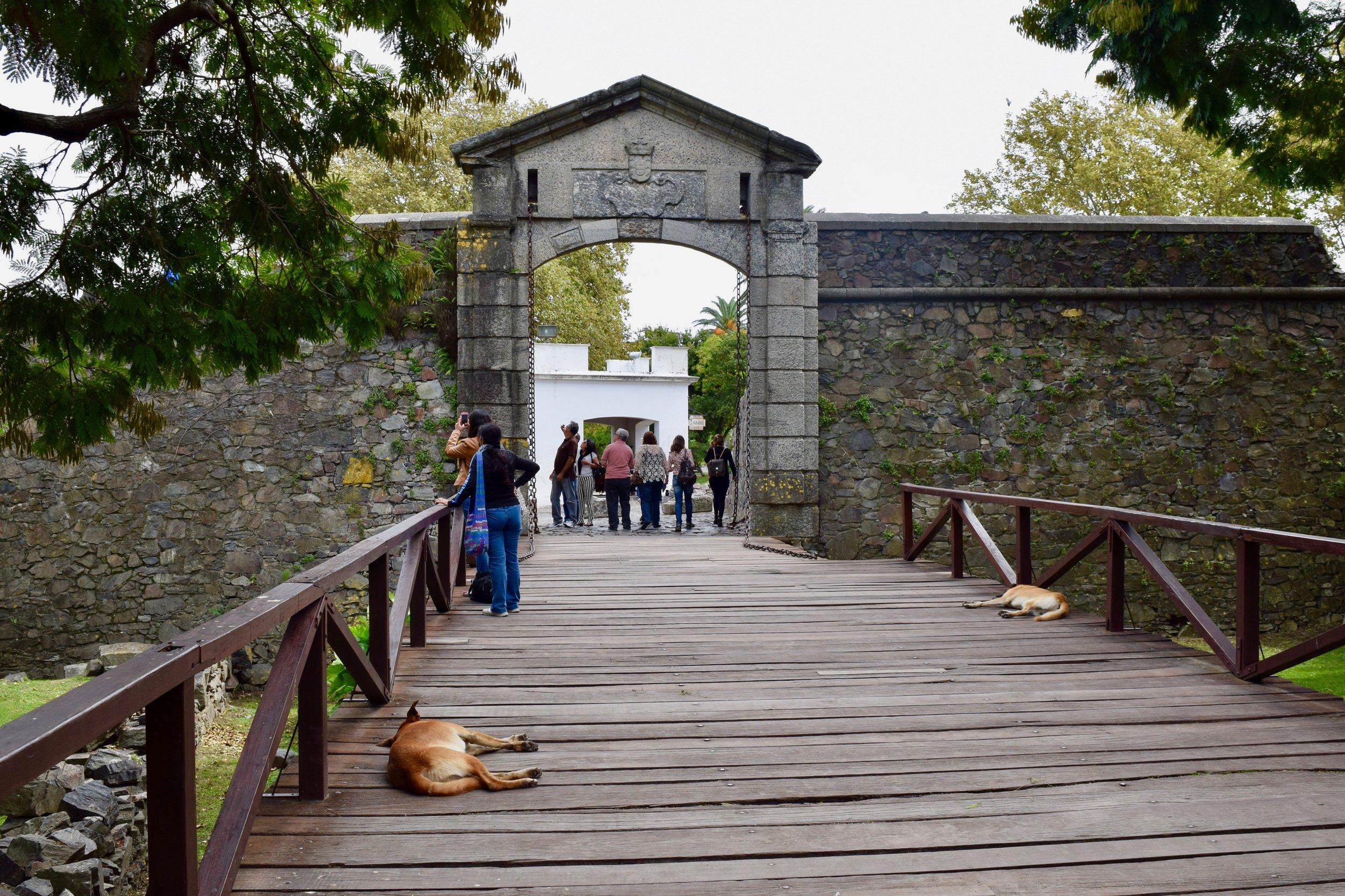 Porta de Campo