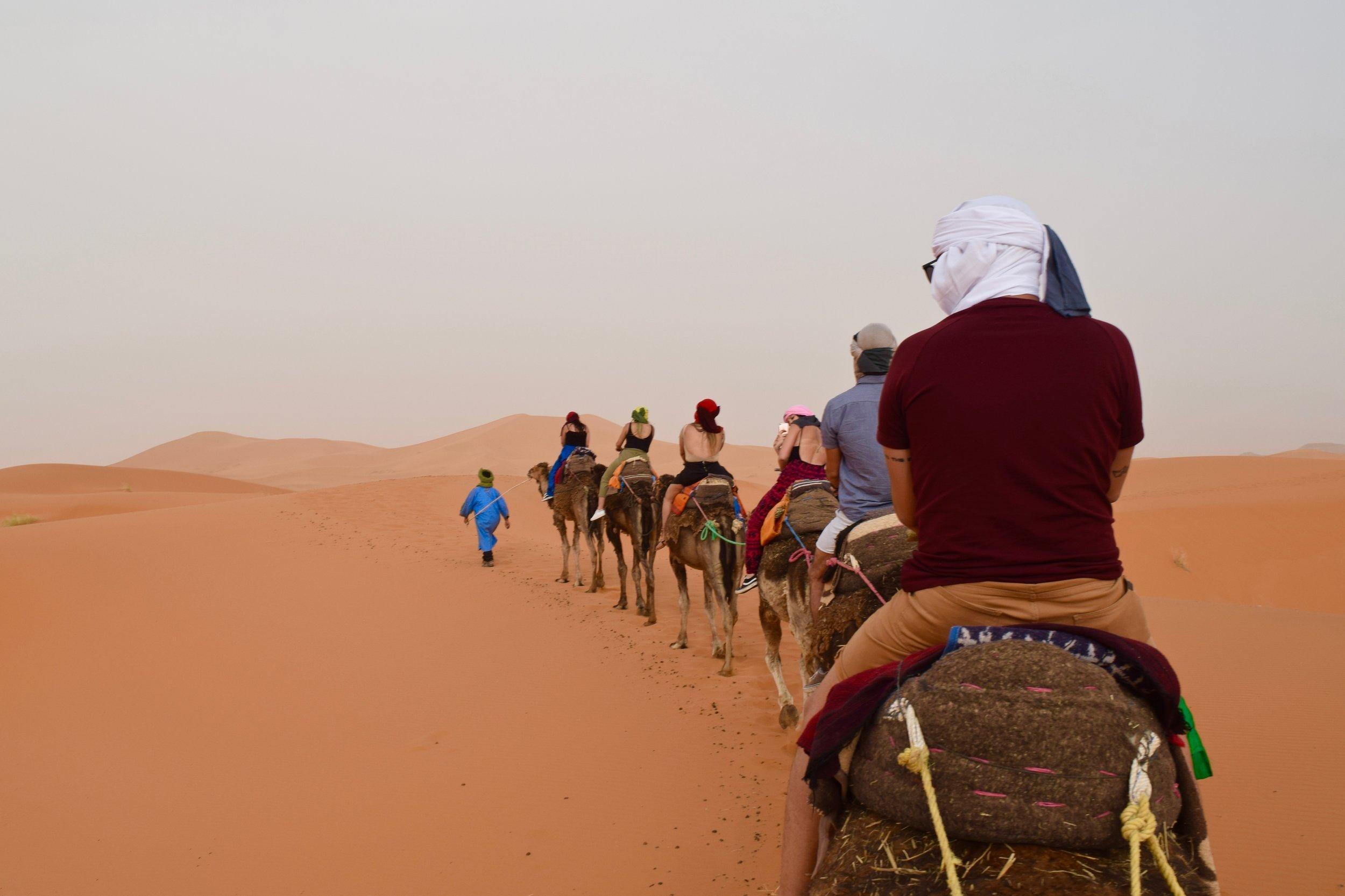 Riding Camel Sahara Desert Morocco