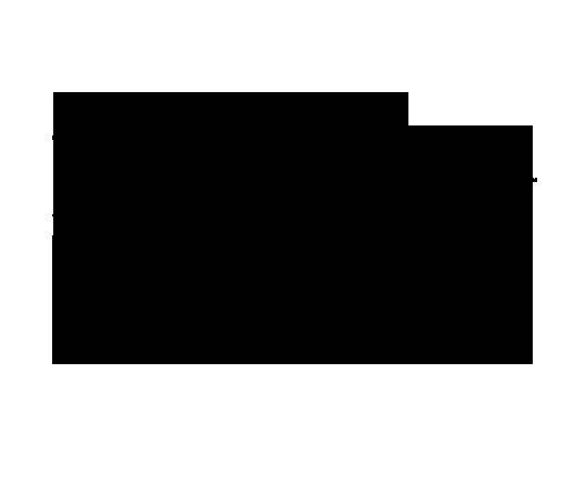 TheBirdhouseFestival__LogoBlack.png