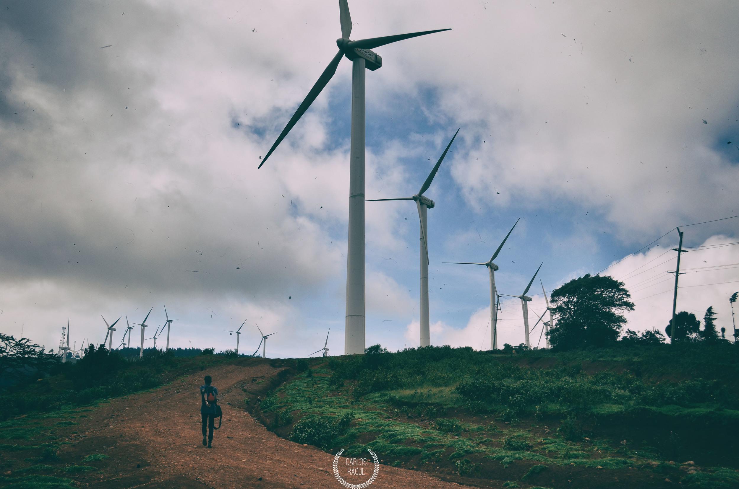 21. Wind Farm