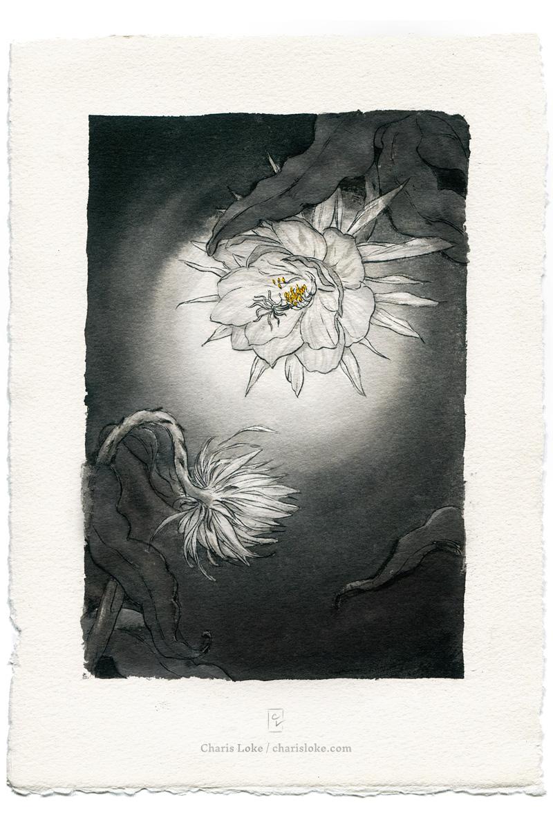 Wailing Moon
