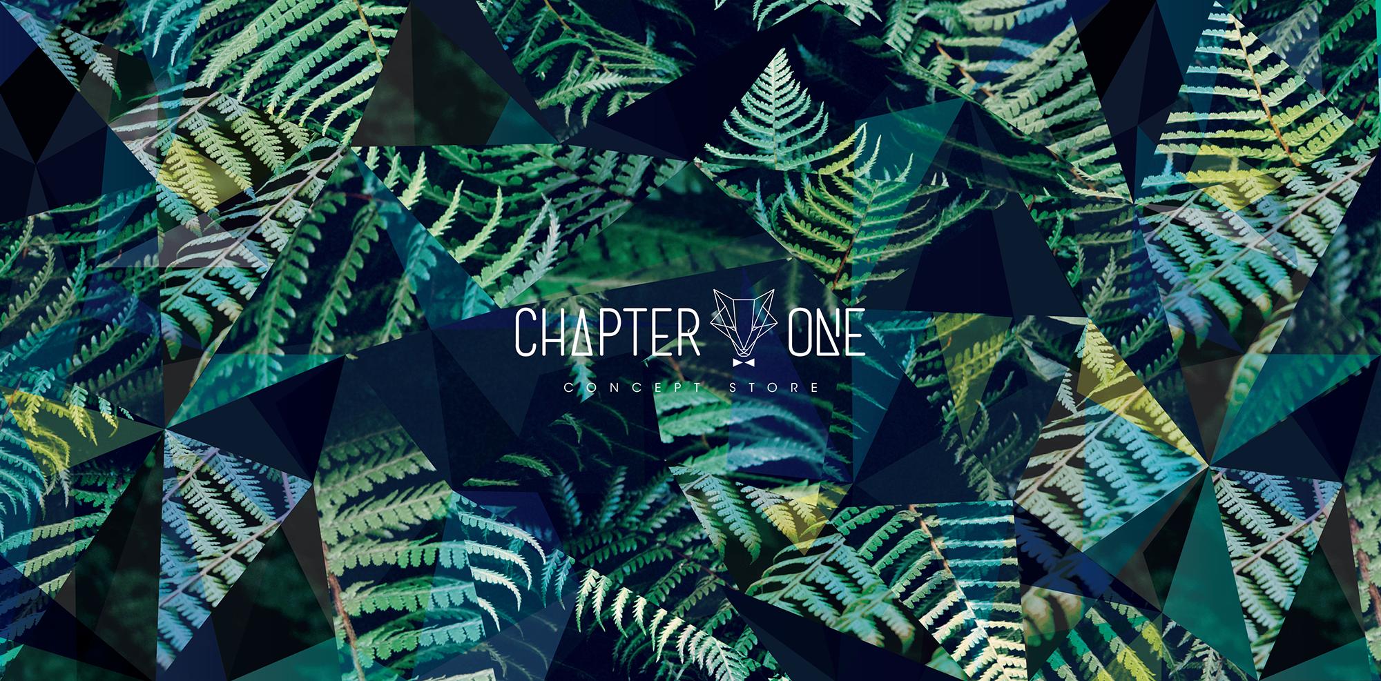 Vlevle-chapter_one-Visual_Identity-logo-graphic_design-gaelle_de_laveleye