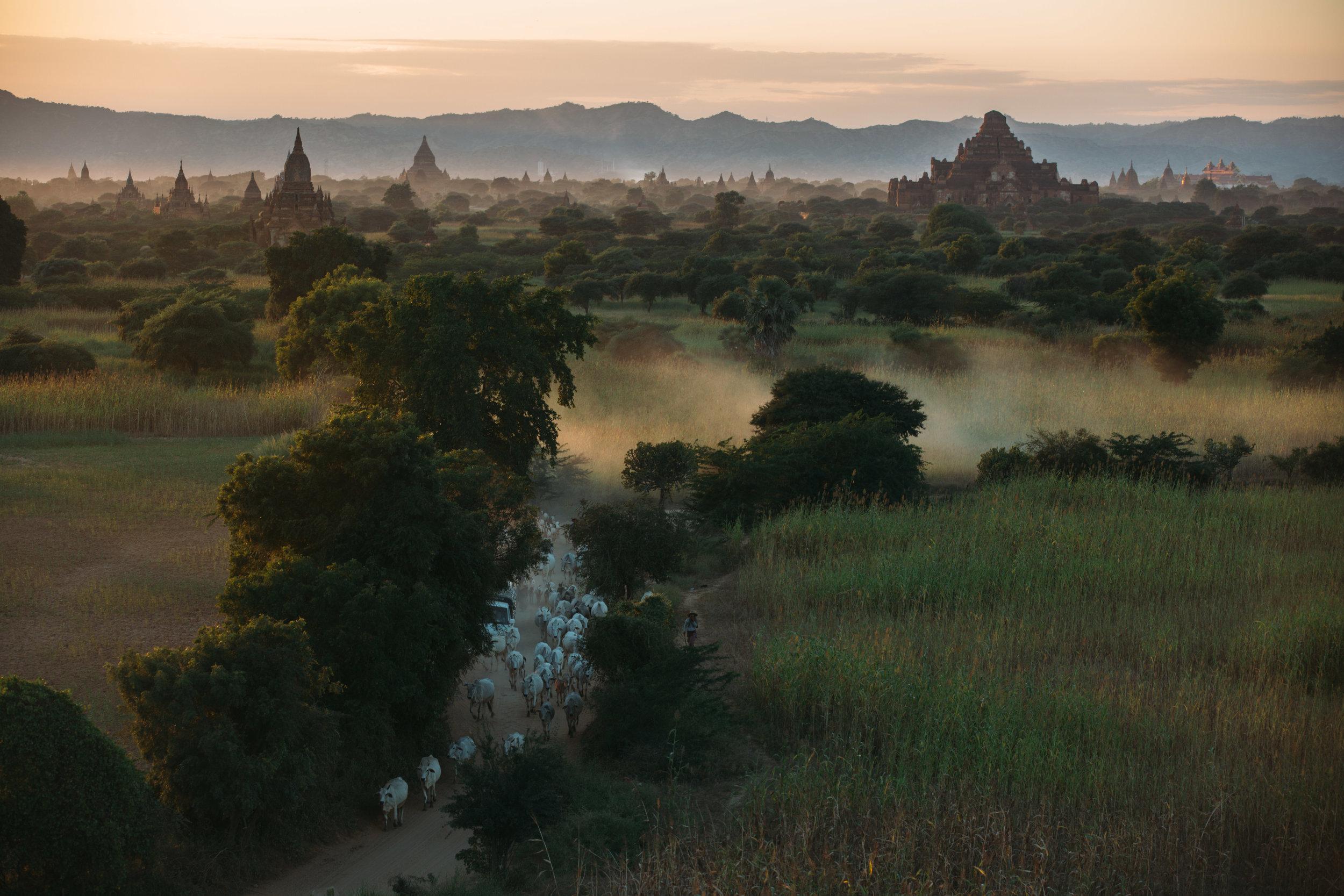 Maccormick_Myanmar-163.jpg