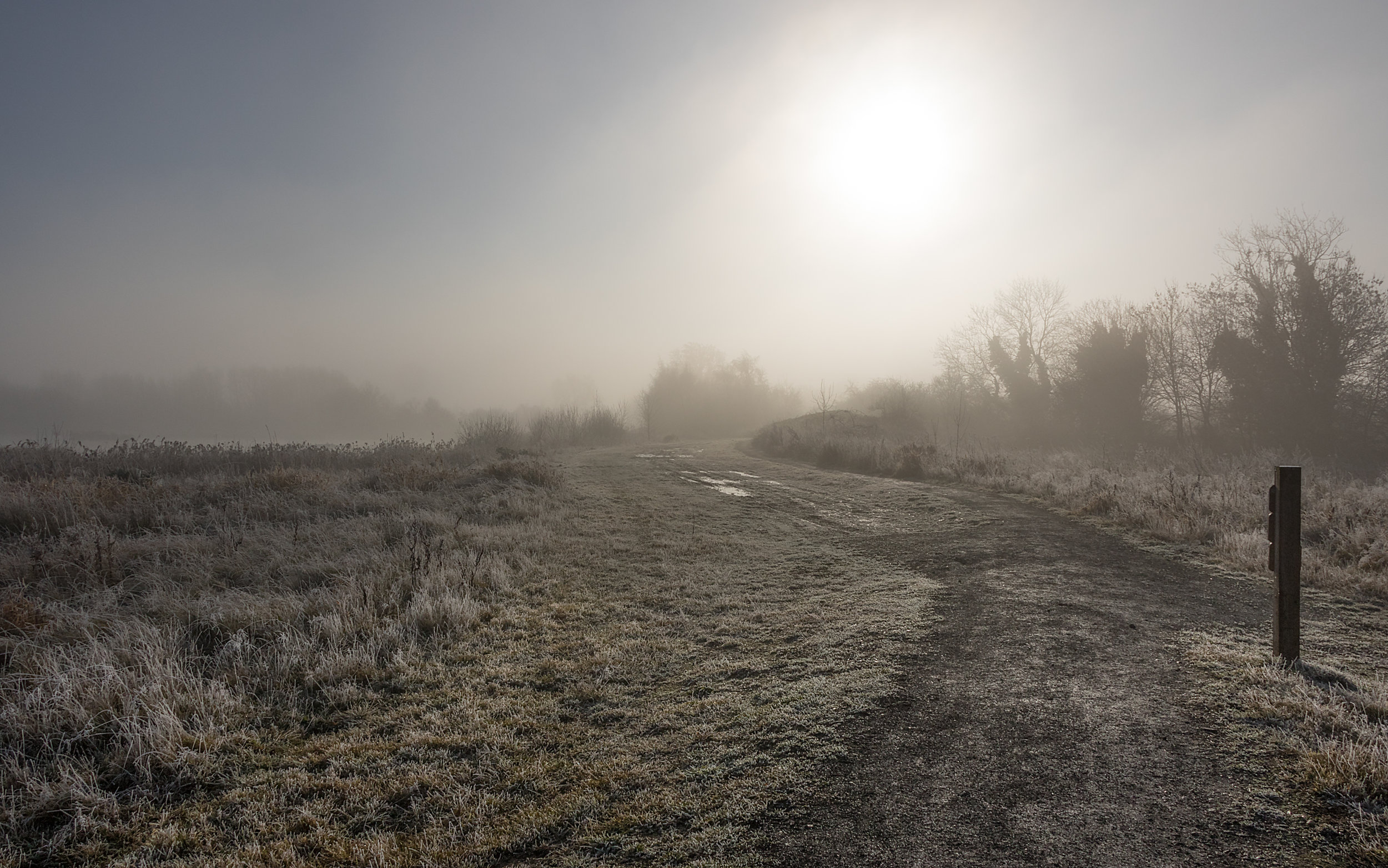 Frosty pathway at RSPB Middleton Lakes