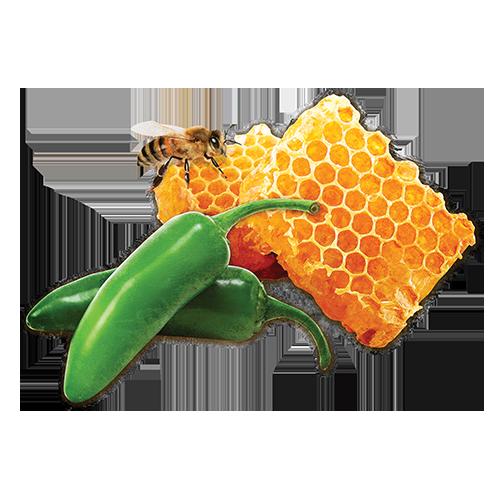 Jalapeño Honey