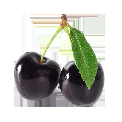 i-BDbc-web-BlackCherry-Cherry-Open-500x500-v2.png
