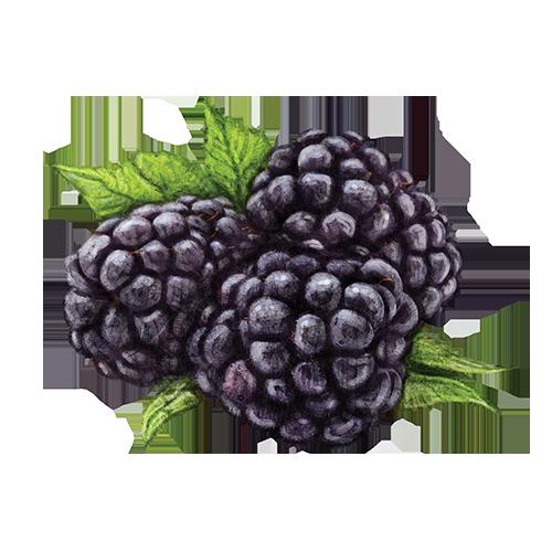 i-BDbb-web-BlackberryPainting-Flavor-Small-Open-500x500-v1.png