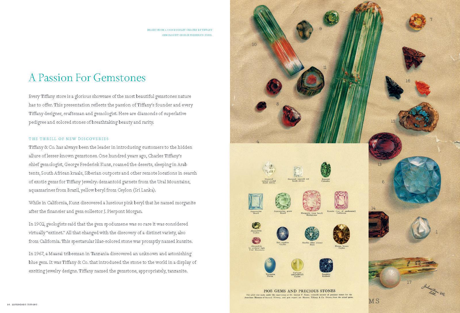 Brand Book 2011_Page_22.jpg