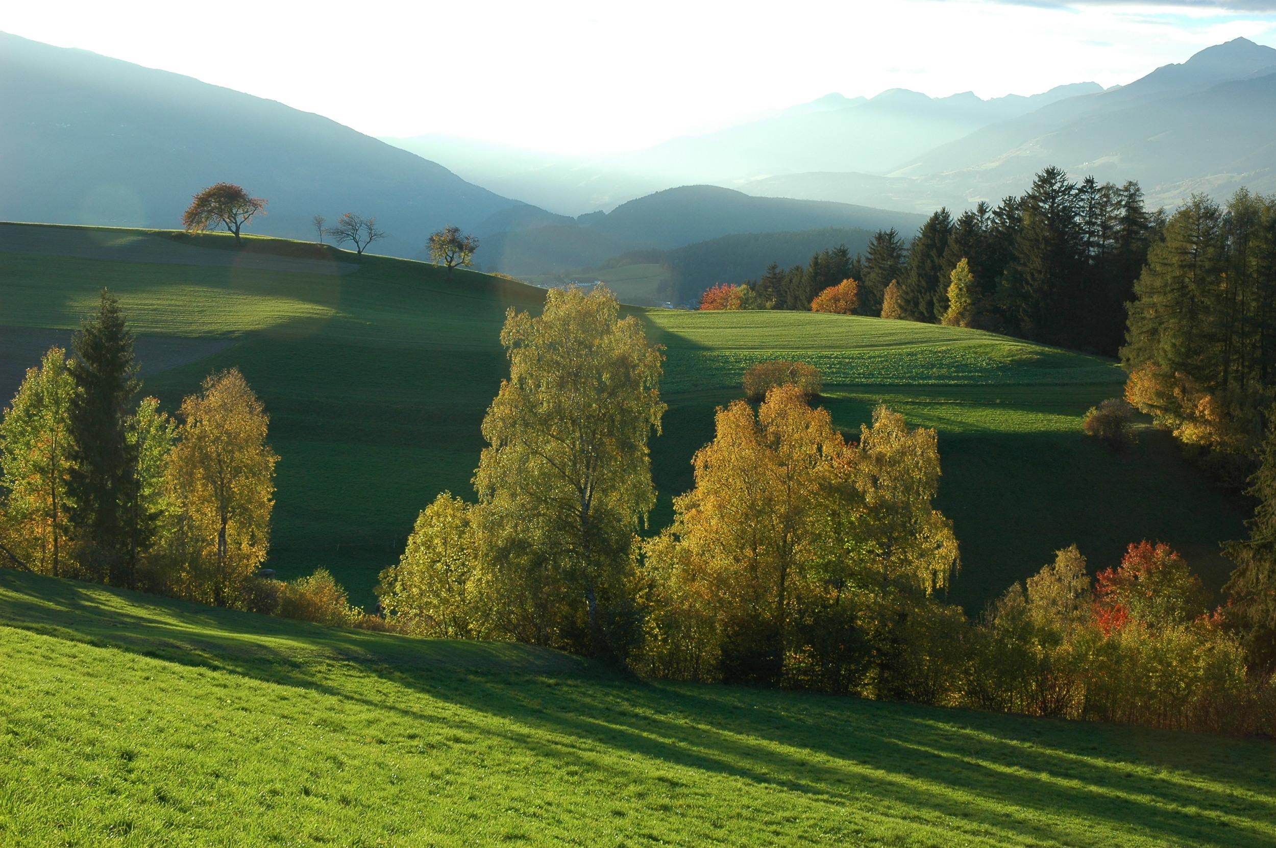 Reischach Herbst 01.JPG