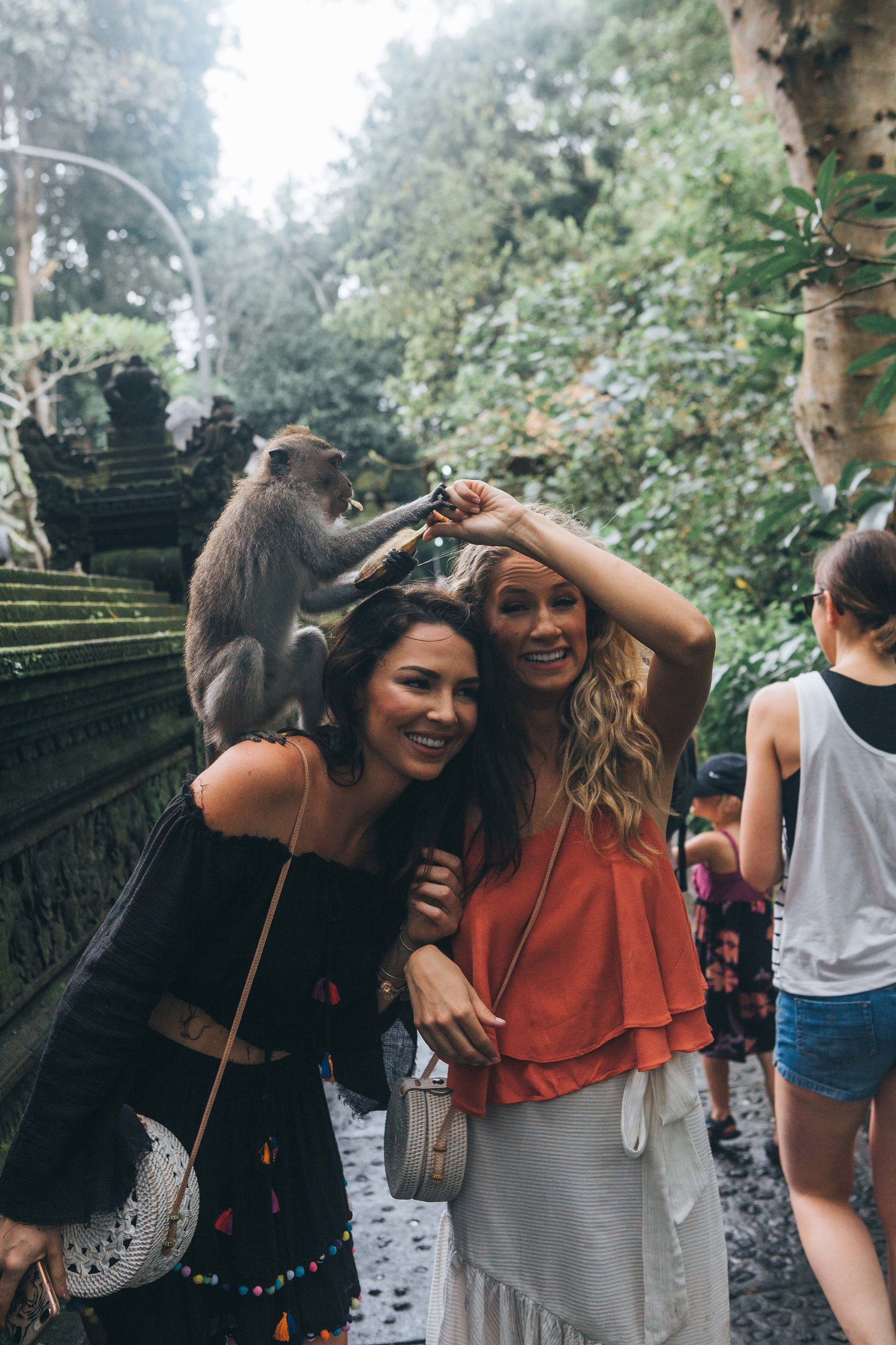 bali ubud monkey forest.JPG