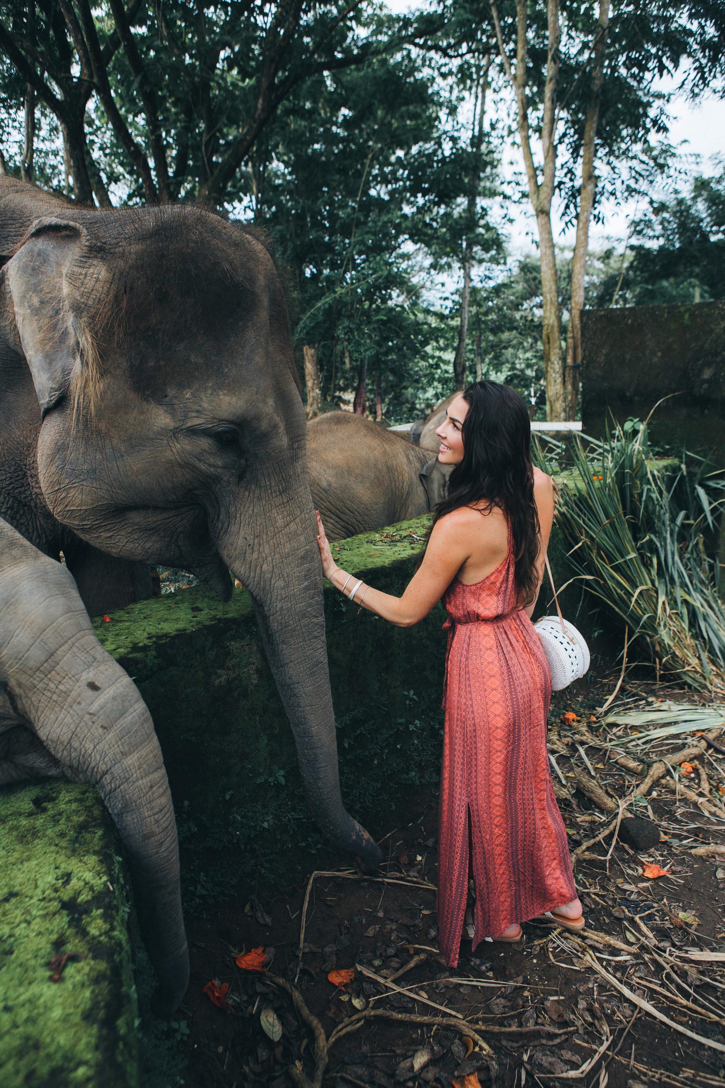 Bali elephant ride.JPG