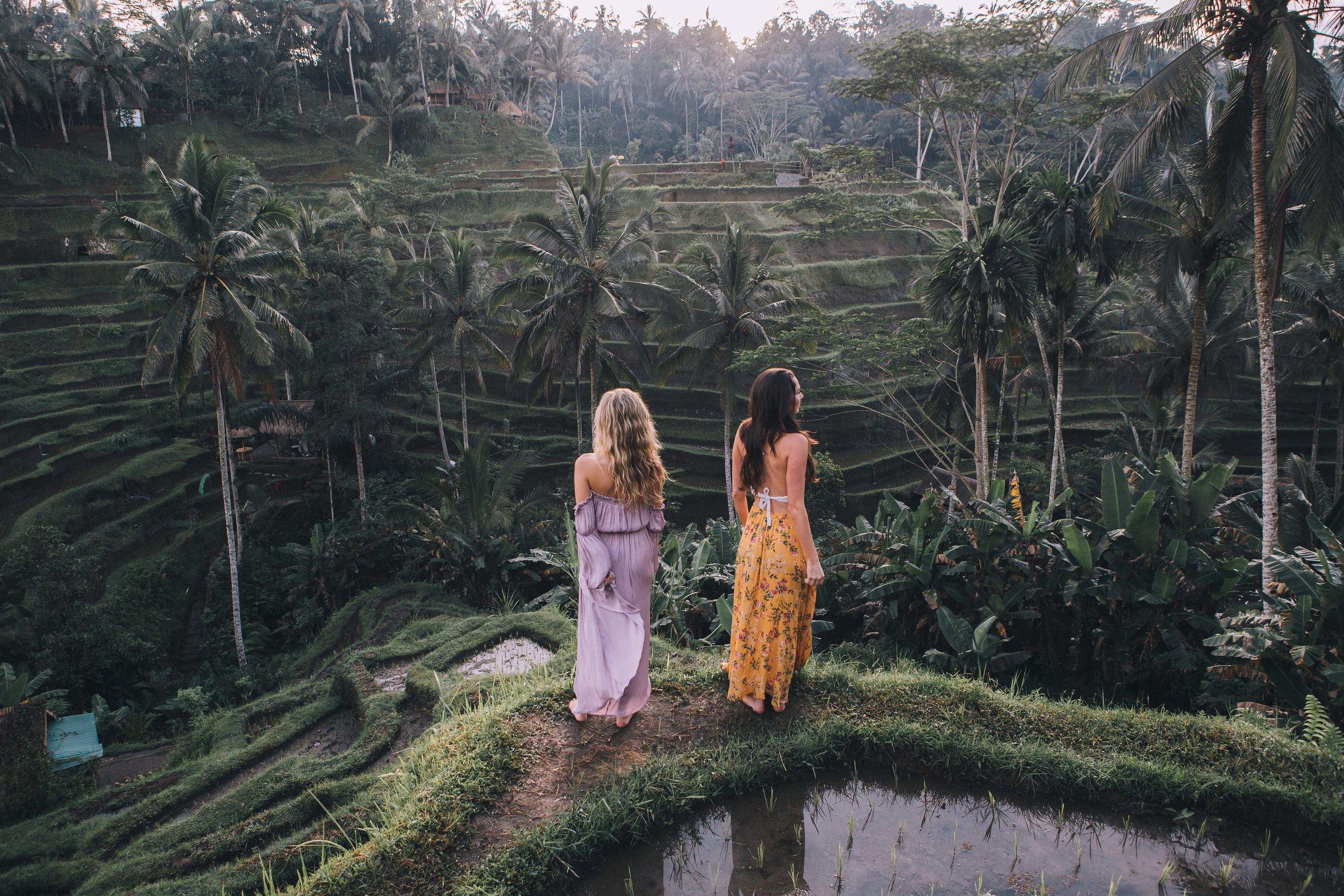 Bali rice terrace.jpg