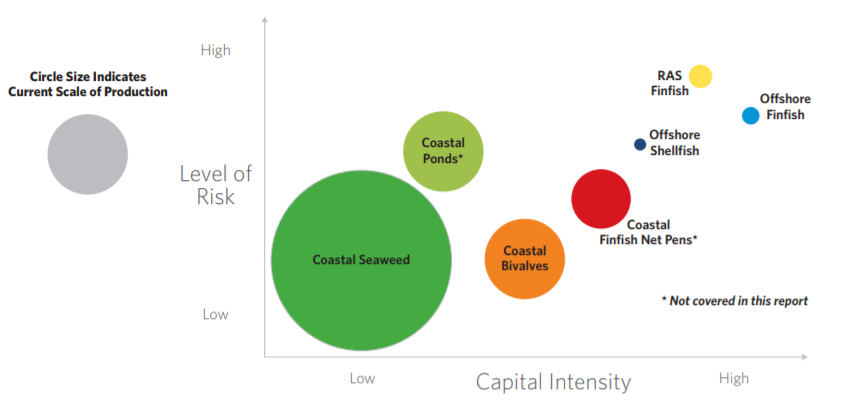 risk and capital.PNG