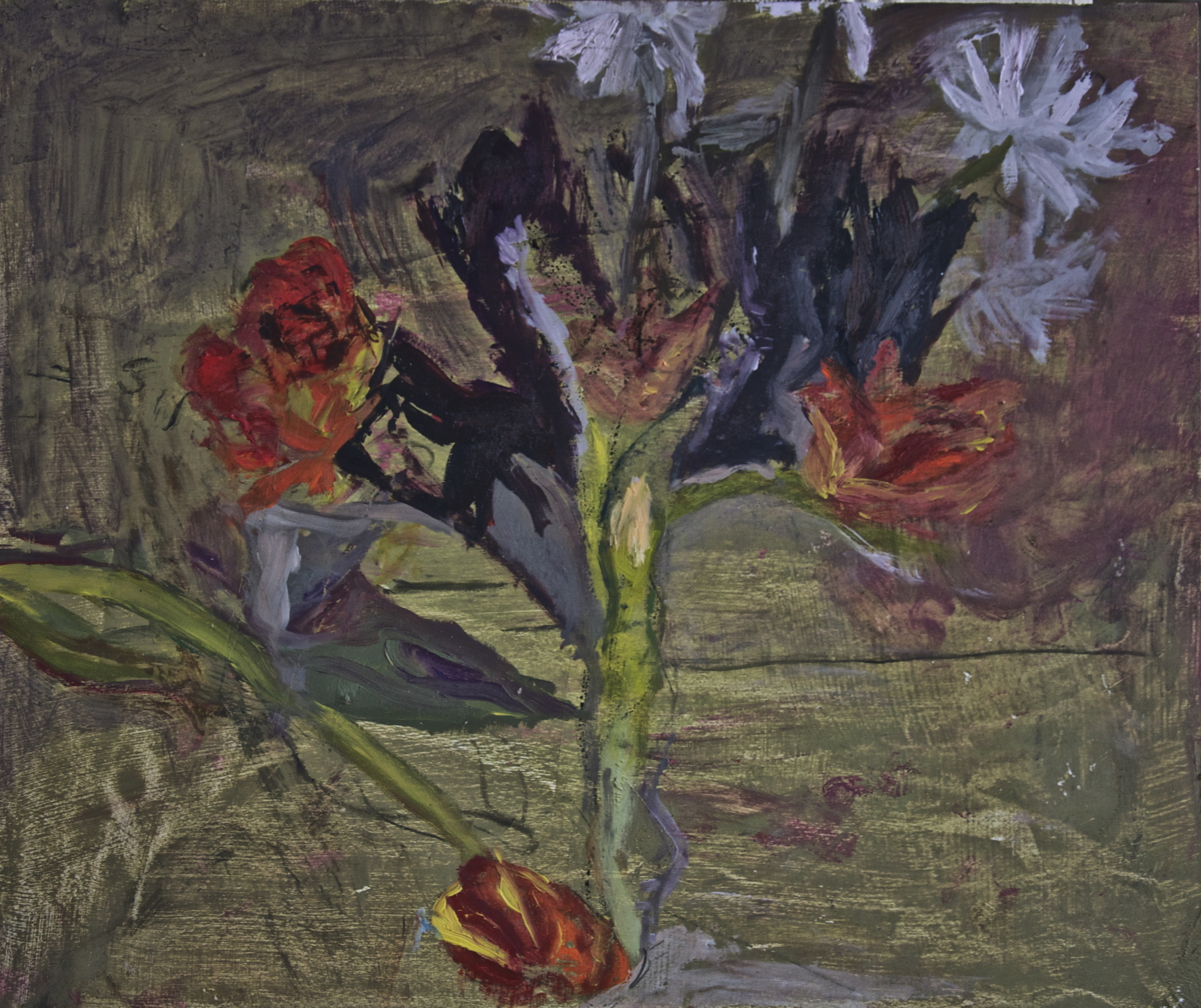 Tulips and Daisies