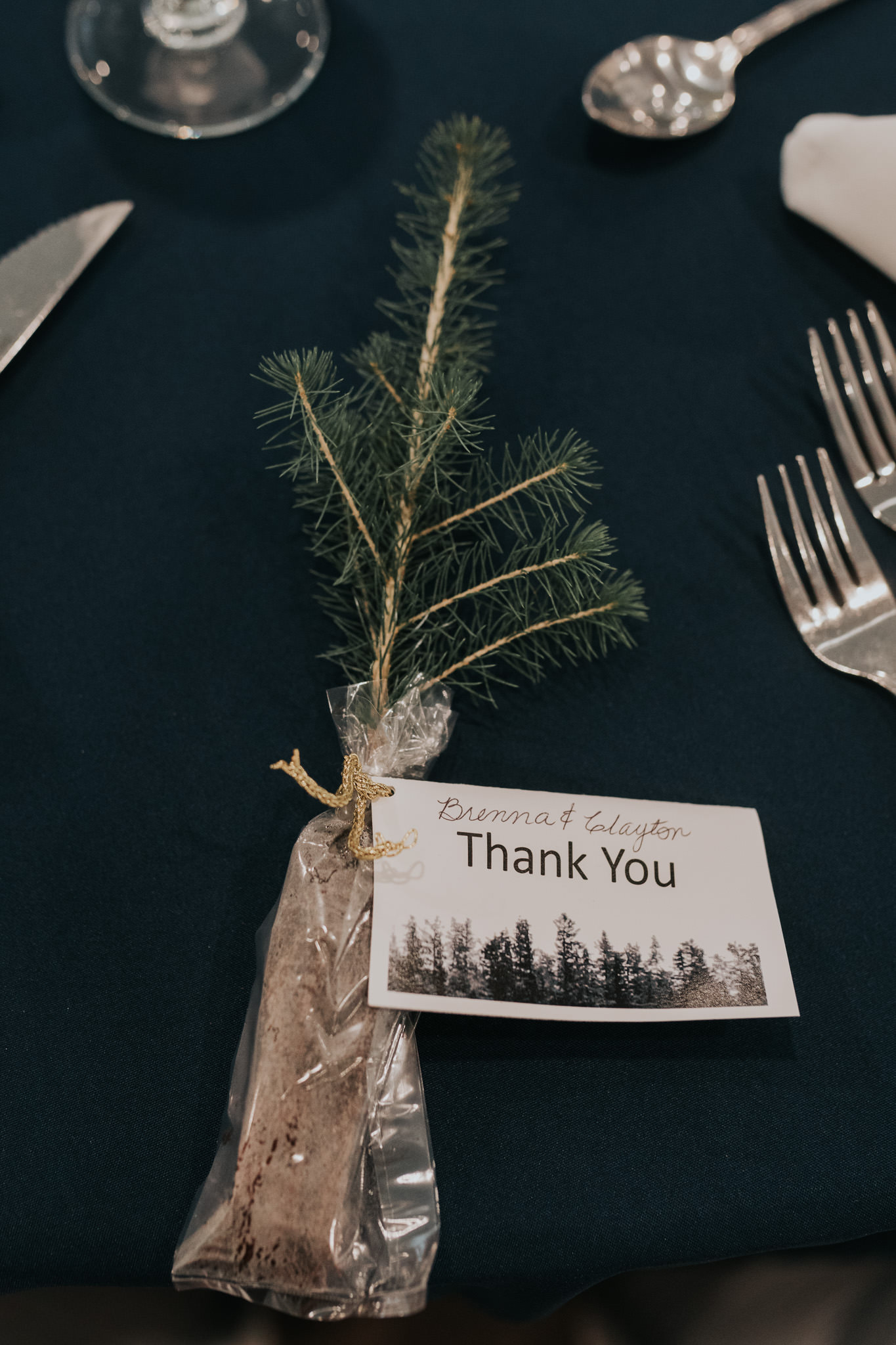pine-ridge-golf-course-winnipeg-wedding-62.jpg