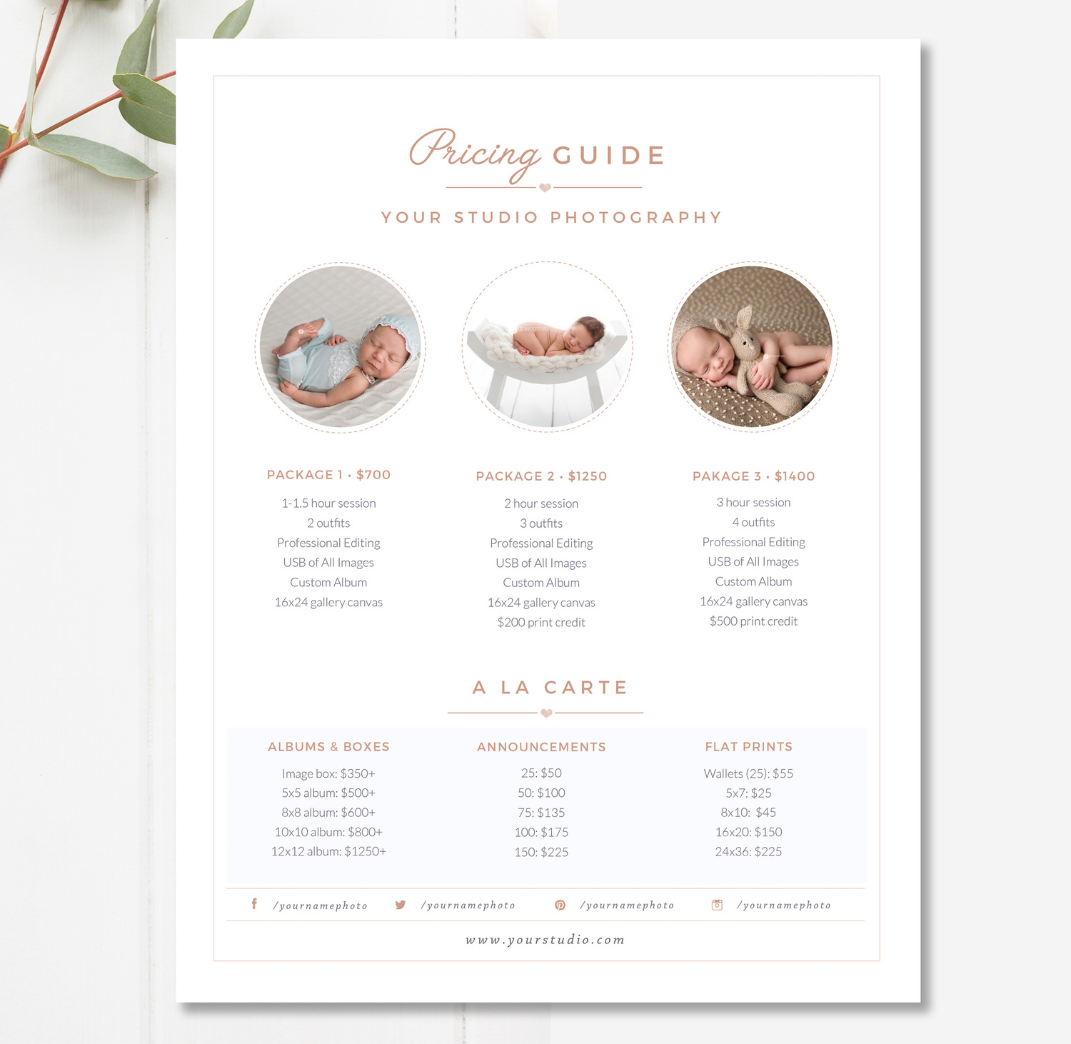 newborn photographer price list template