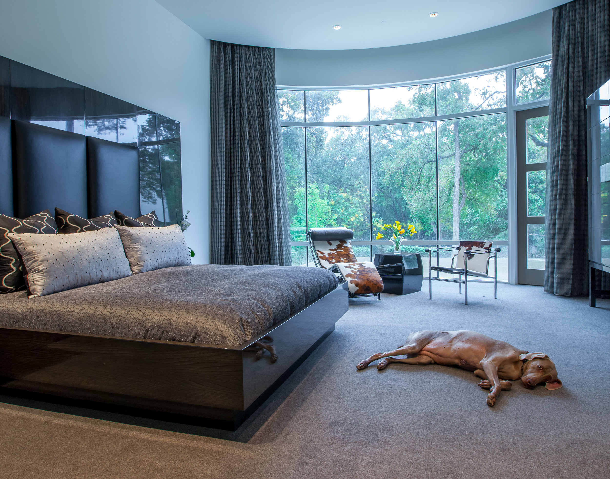 BROOKRIDGE- Master Bdrm dog.jpg