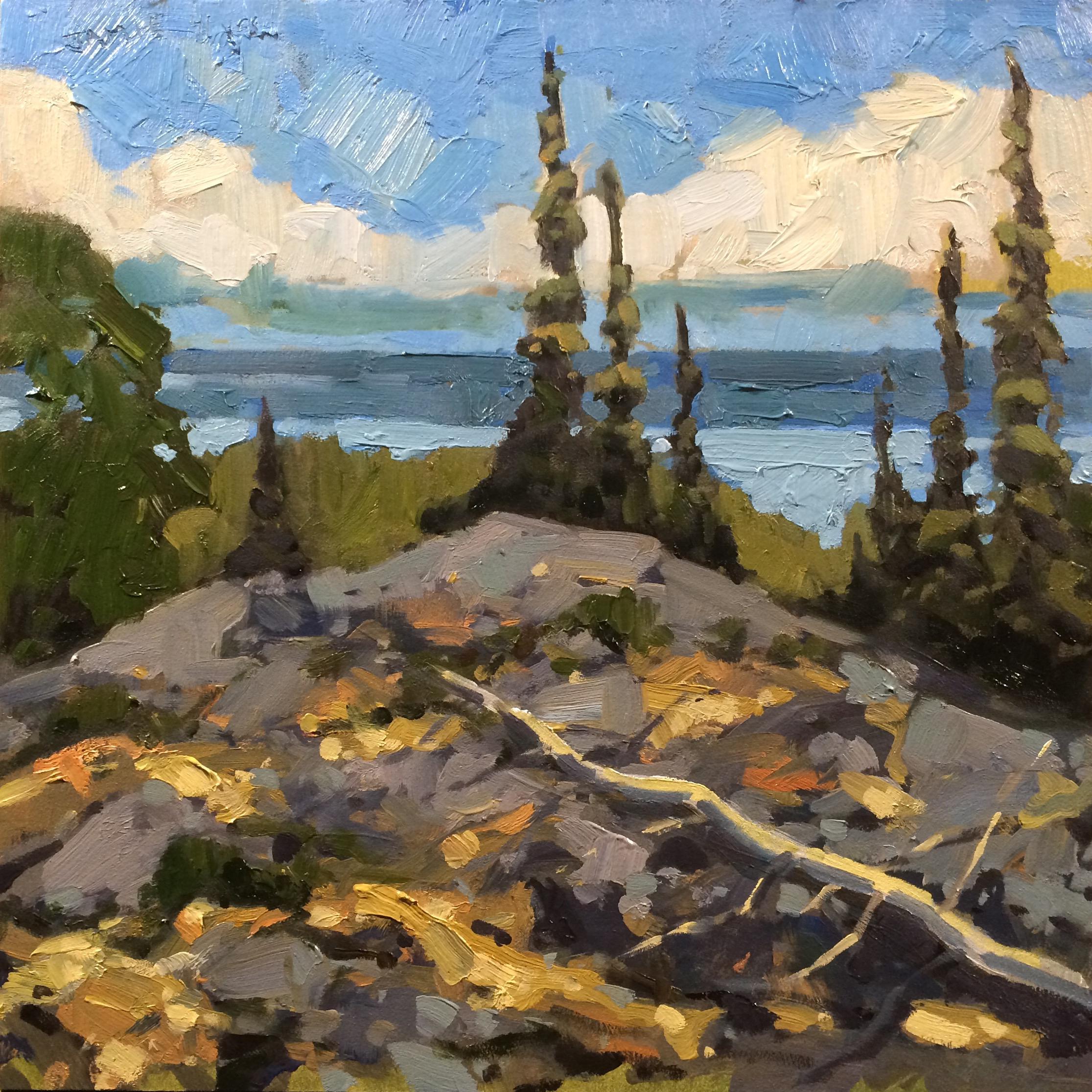 SOLD || View of Great Slave Lake, NT by Jamie Jardine