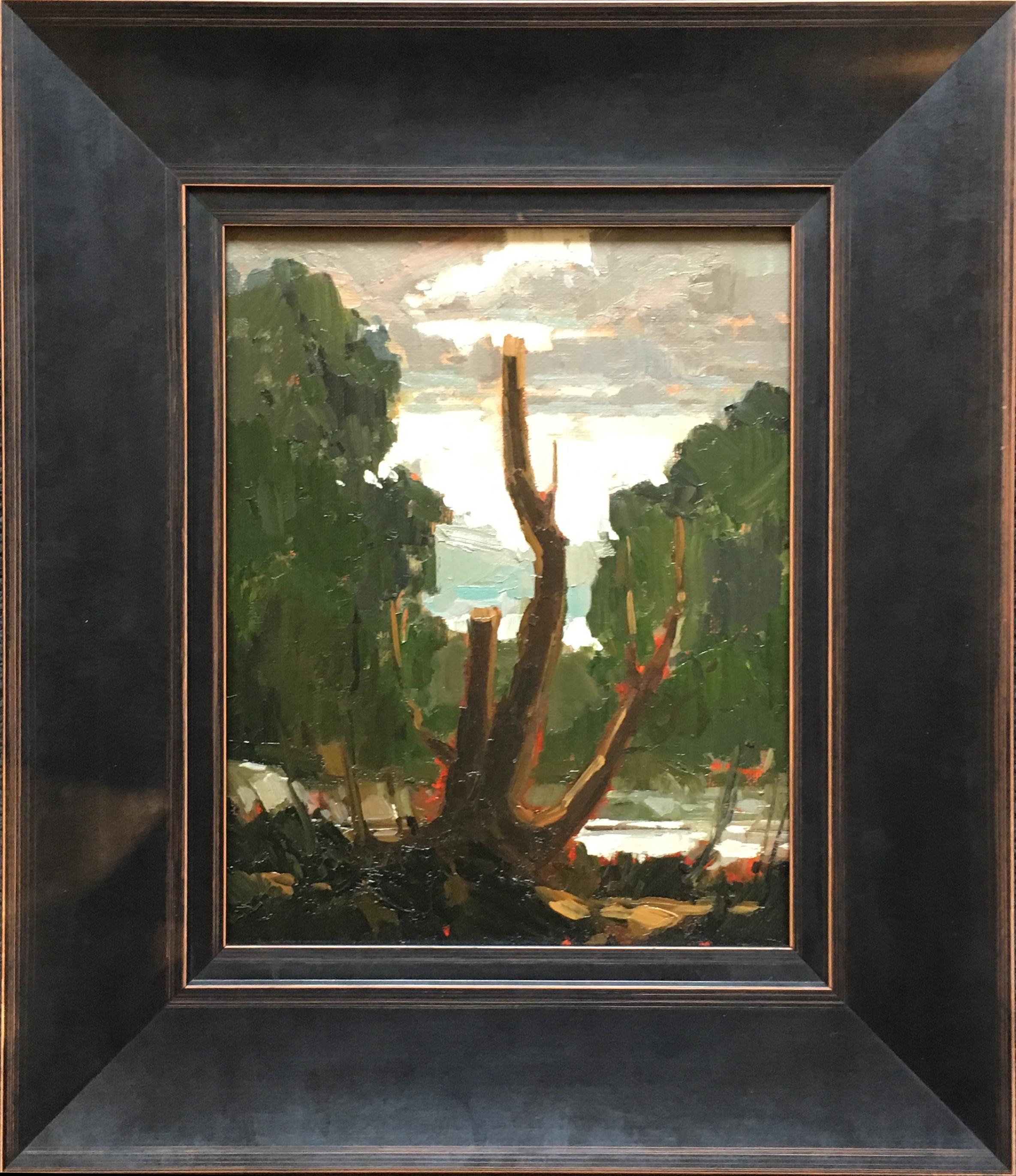 SOLD II Old Tree Along the Avon by Jamie Jardine