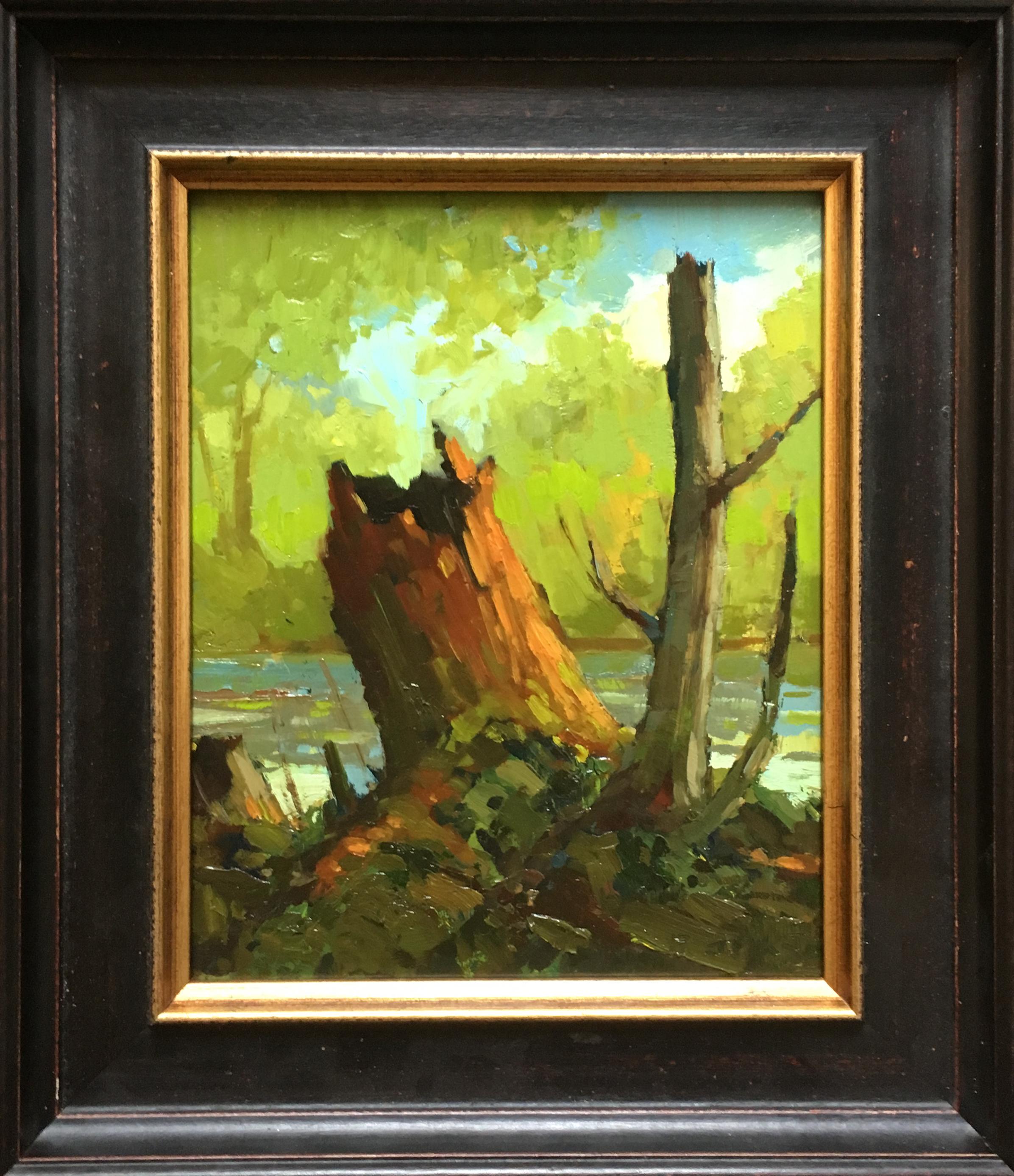 Stump by Jamie Jardine