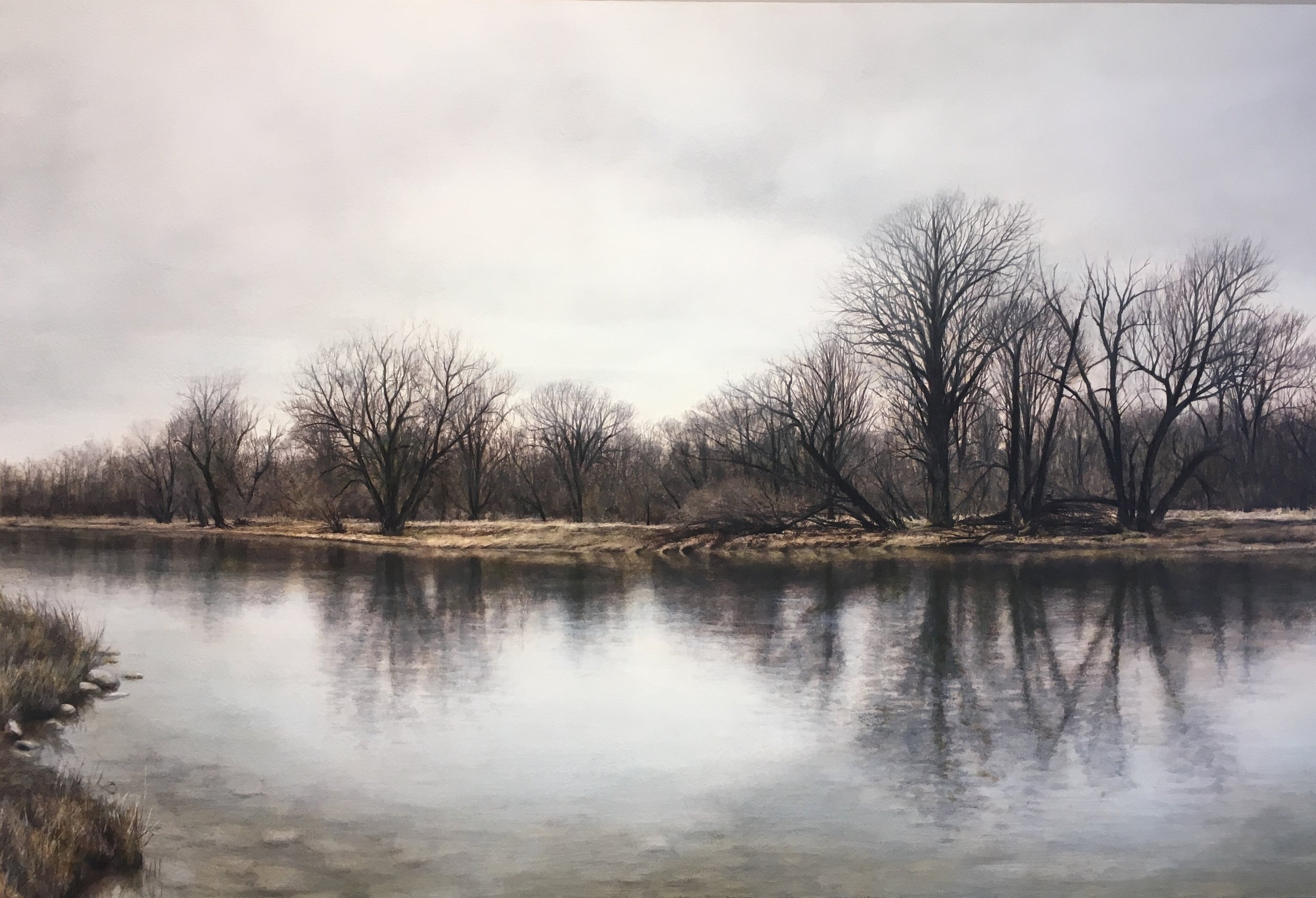 SOLD || Roots in the River by Craig Guthrie