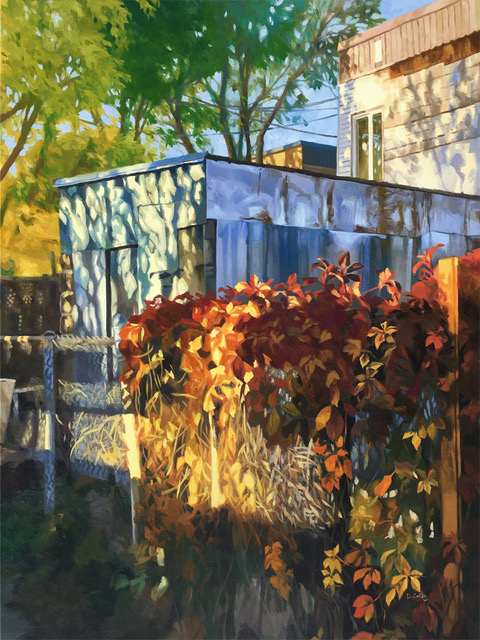 Backshed by Daniel Colby