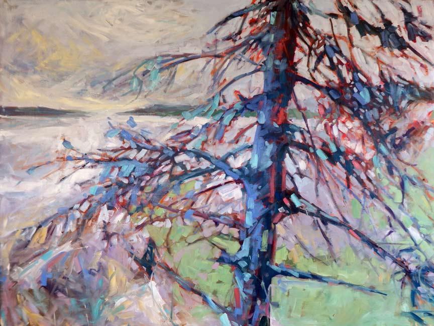 Cold Bones by Sheila Davis