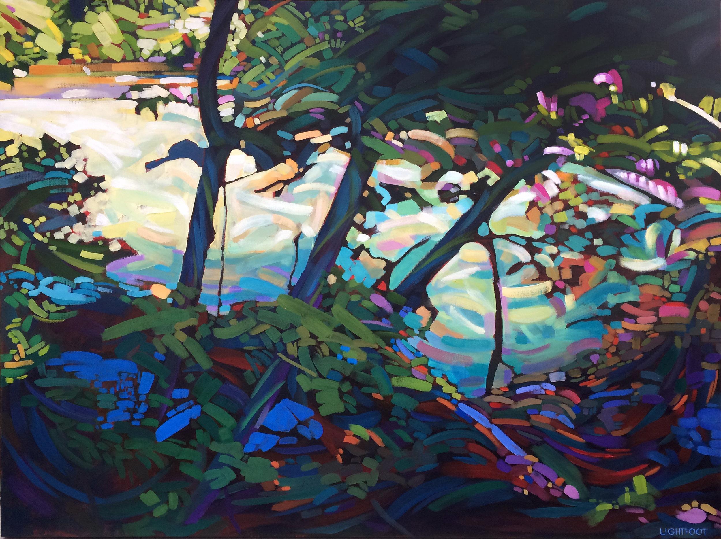 Rapids by John Lightfoot