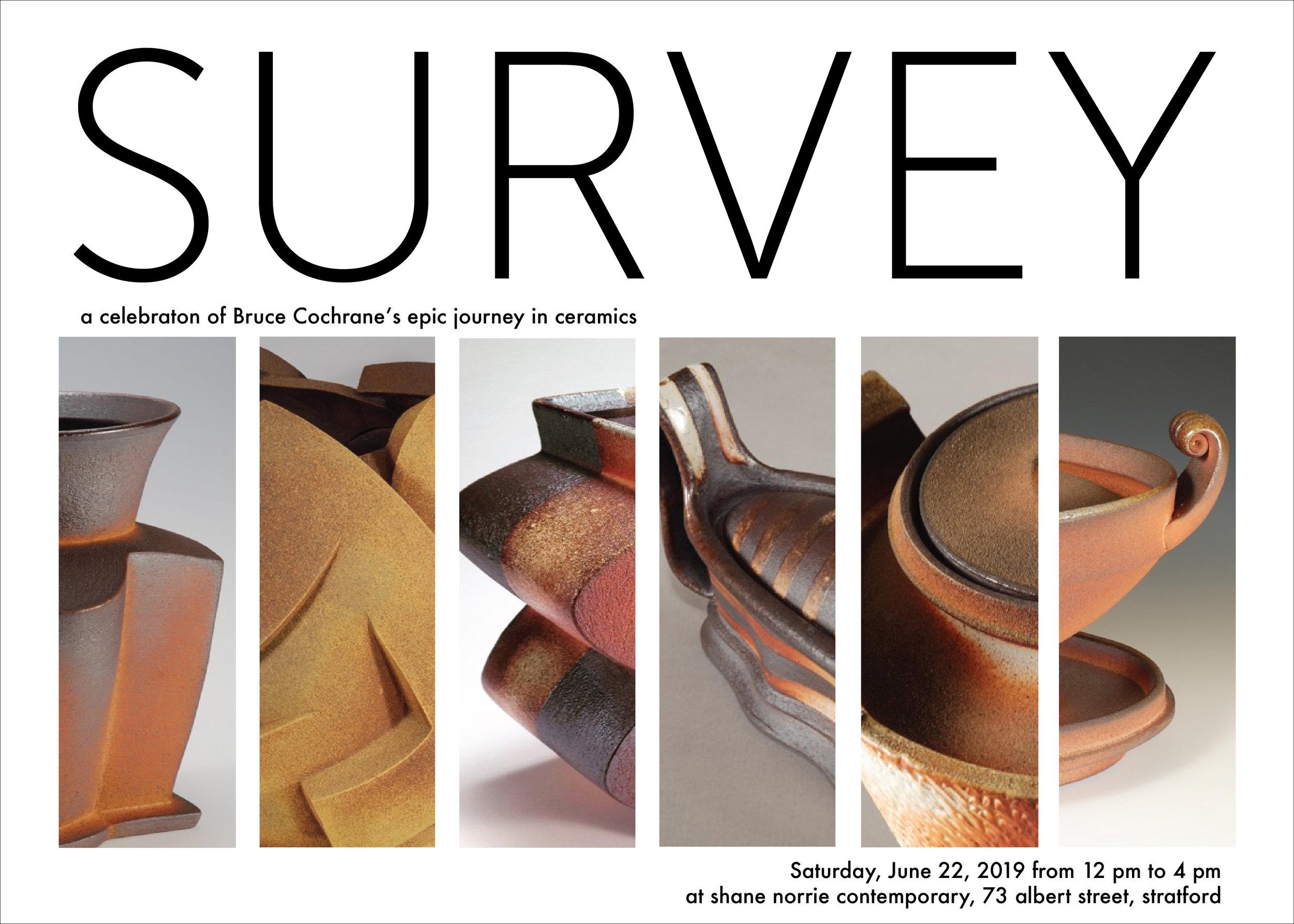 Survey_poster_horizontalV1.jpg