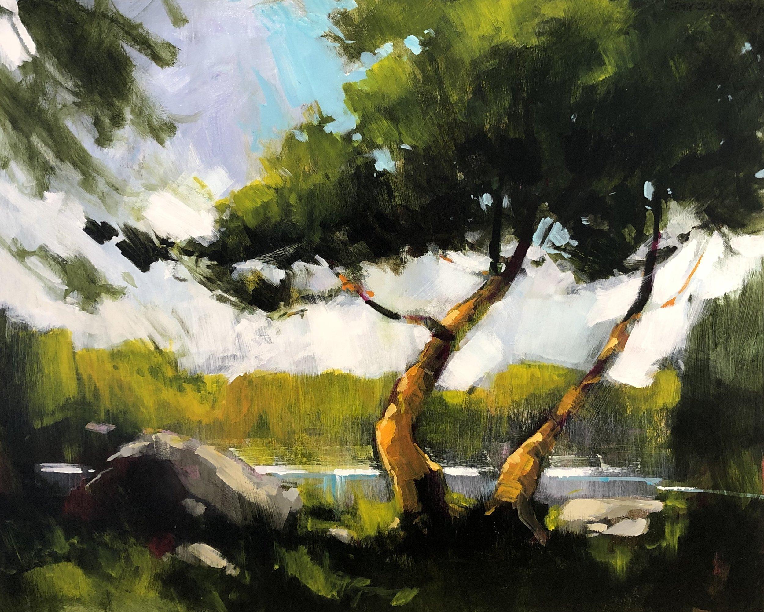 Tree on the Water Edge by Jamie Jardine