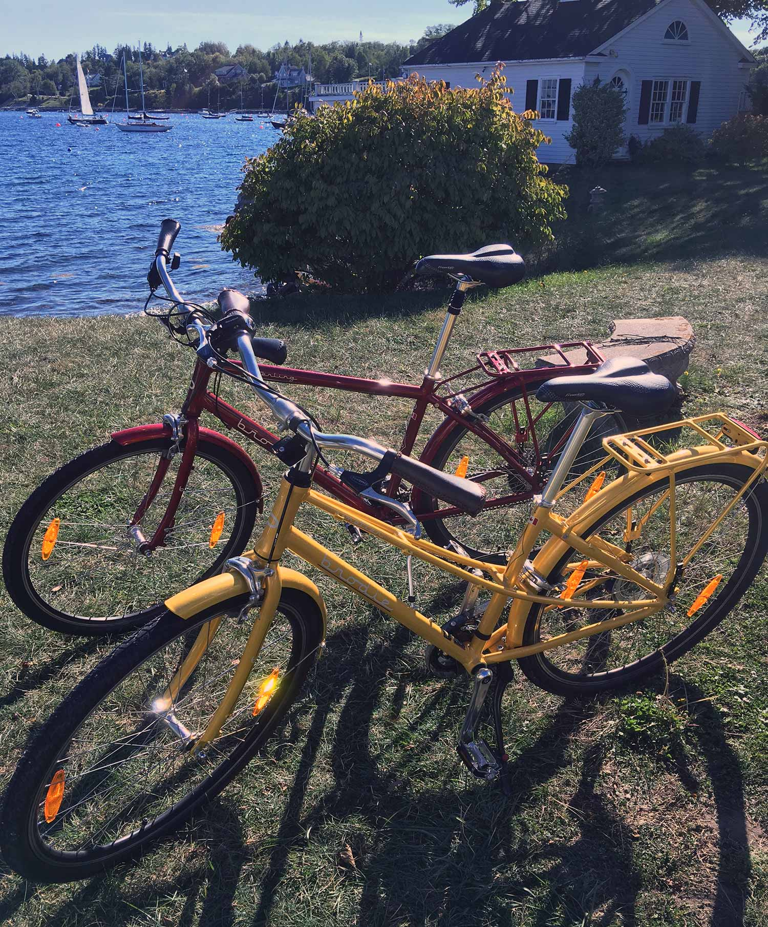 Bikes to Rent!