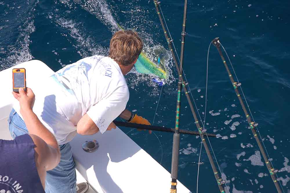 Fishing Report - High Return Sportfishing