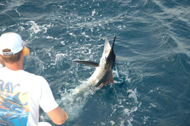 High Return Sportfishing - 9.jpg