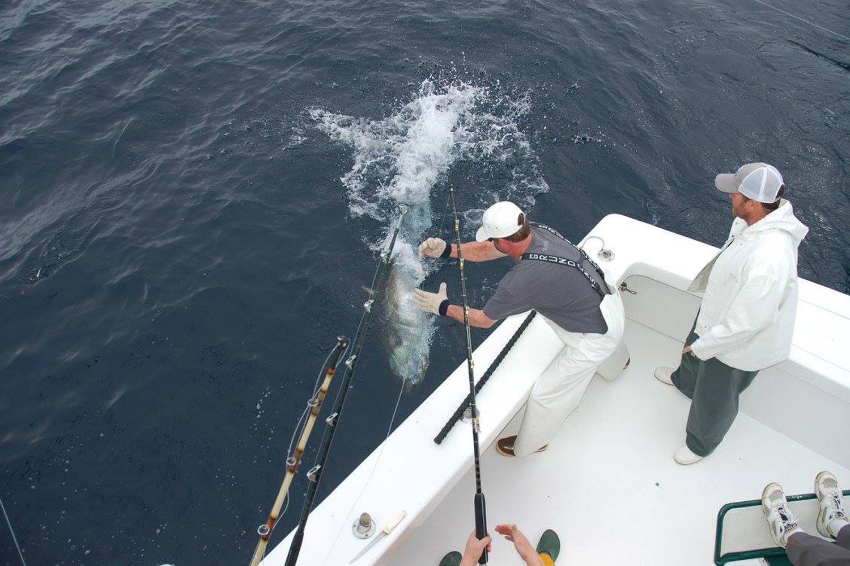 High Return Sportfishing - 28.jpg