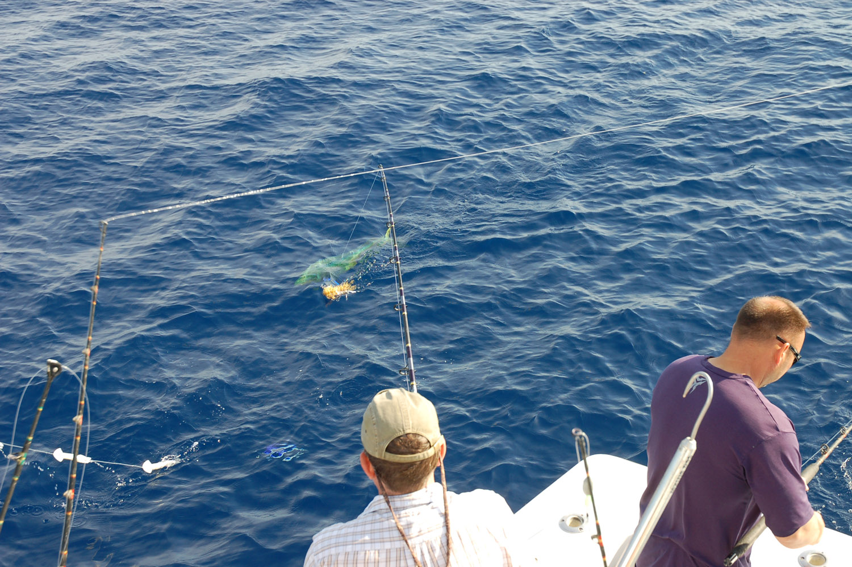 High Return Sportfishing - 69.jpg