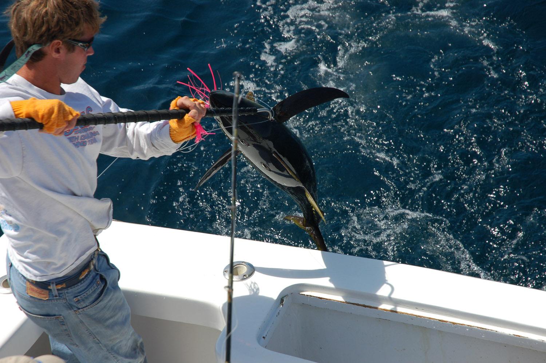 High Return Sportfishing - 79.jpg