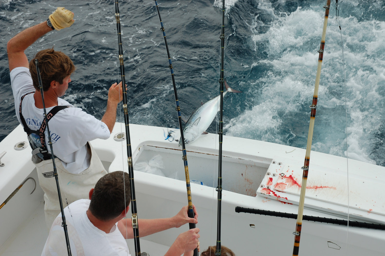High Return Sportfishing - 108.jpg