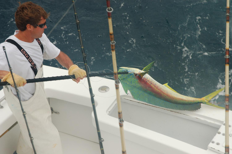 High Return Sportfishing - 112.jpg
