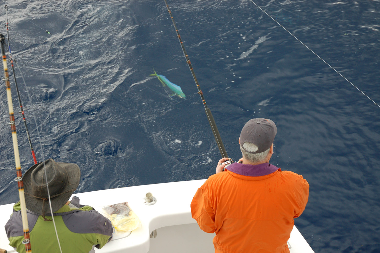 High Return Sportfishing - 121 .jpg