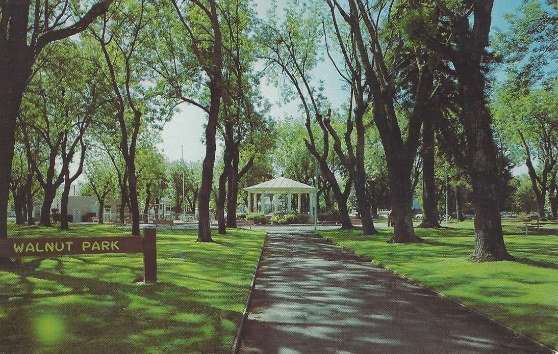 Walnut Park color postcard, nd.jpg