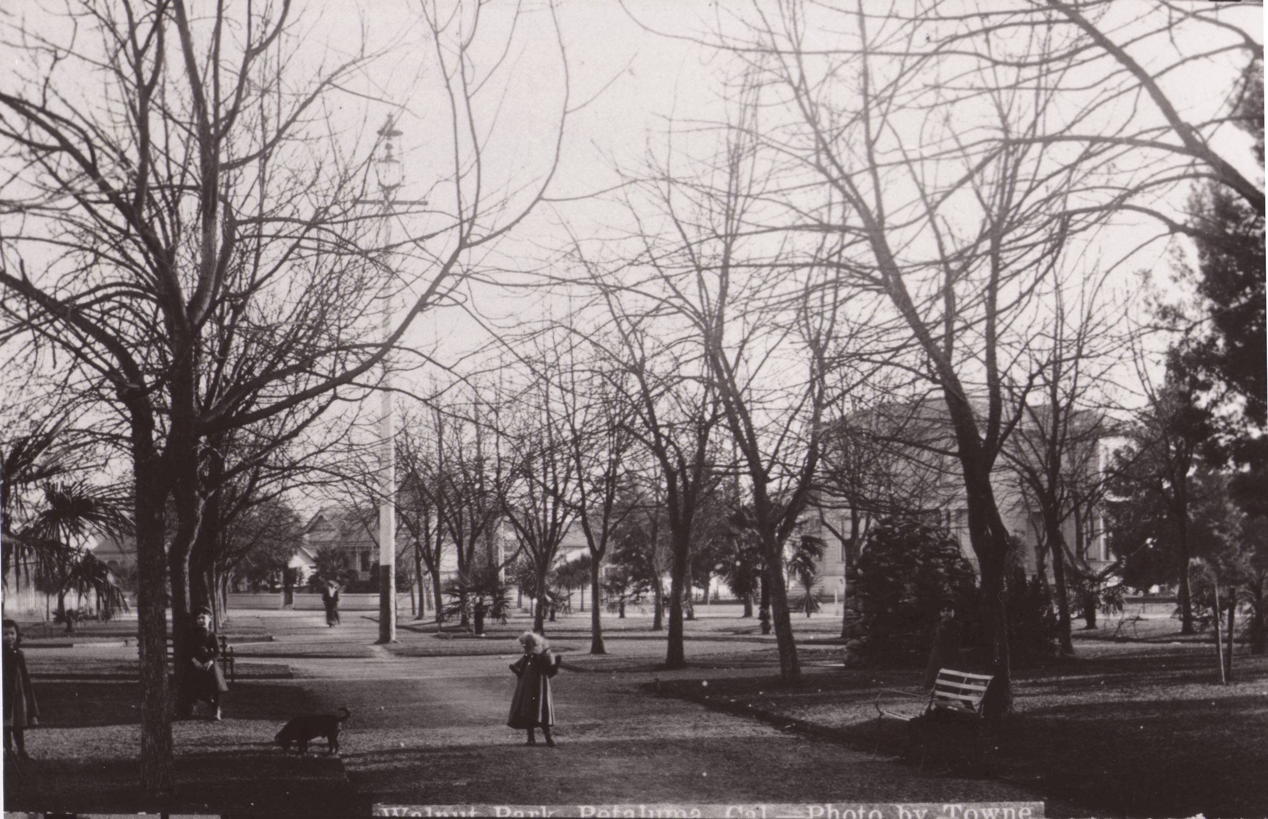 Early Walnut Park.JPG