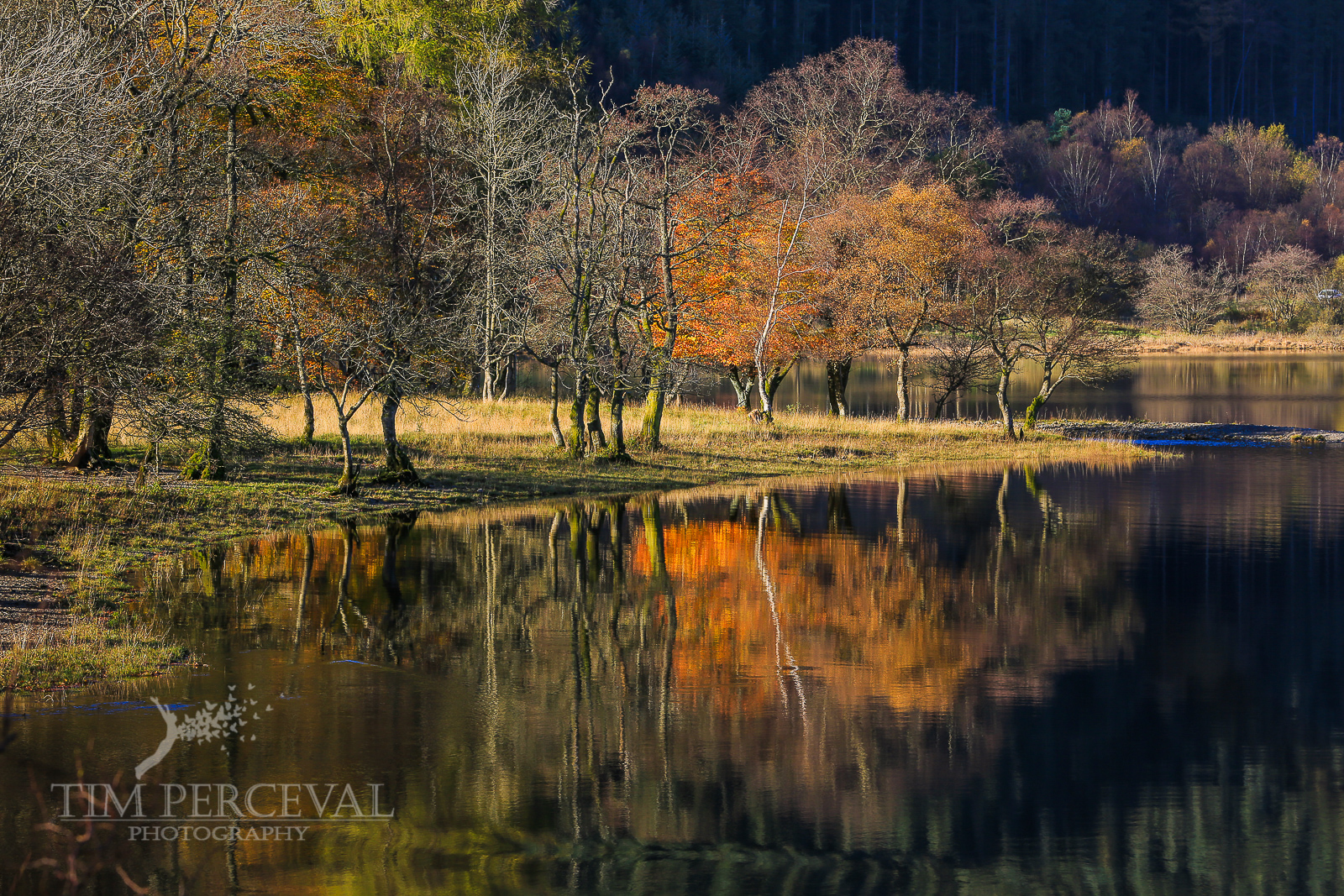 Autumn tree reflections over Loch Lubnaig