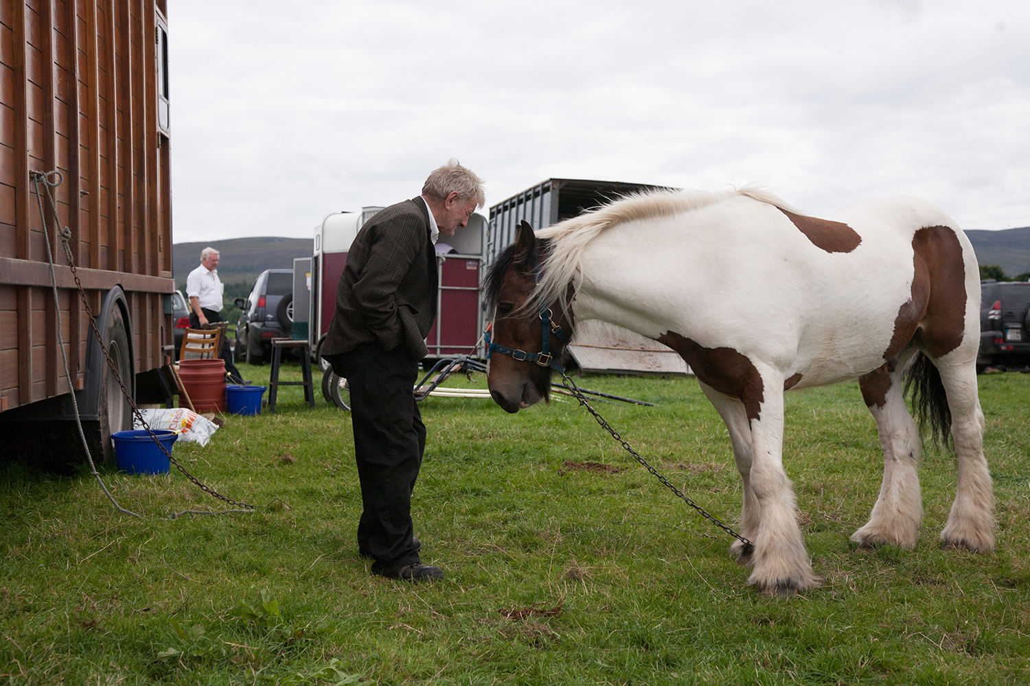 A documentary photograph of a man looking over a horse at the agricultural show in the west of ireland