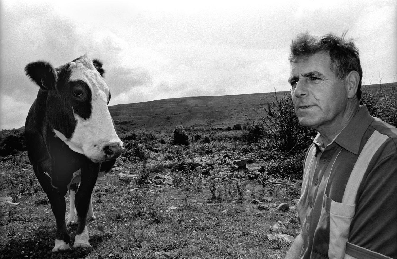 A documentary photograph of an irish farmer and his cow