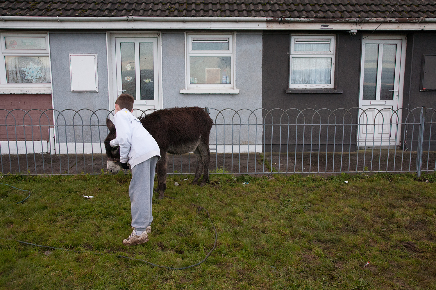 A documentary photograph of a boy petting a donkey in Moyross, Limerick, Ireland