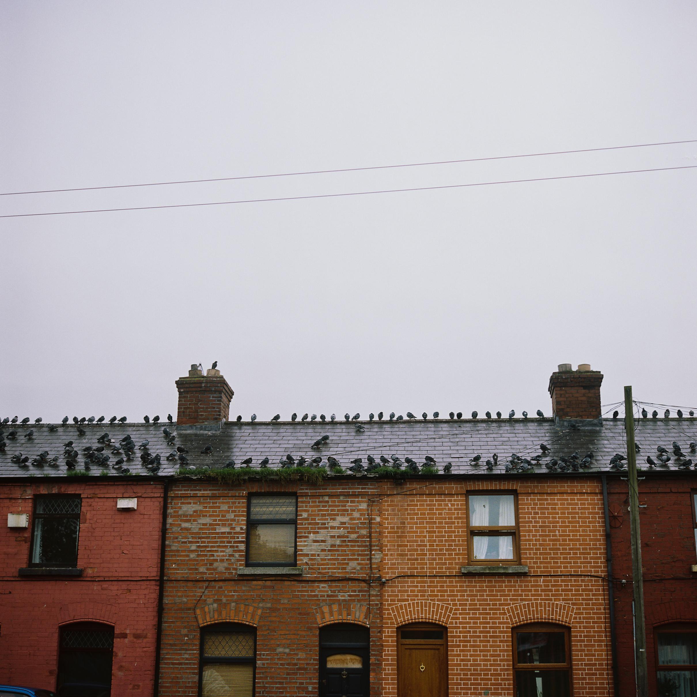 23.TheLiberties.Dublin.jpg